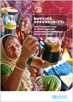 Burning opportunity: clean household energy for health, sustainable development and the wellbeing of women and children - executive summary