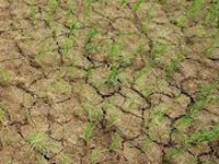 Experts: Tech to predict drought