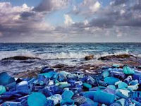 Oceans would have more plastics than fish by 2050, reveal studies