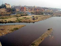 Artificial pond helps cut Hindon pollution