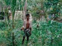 Tribals tread arduous road for forest rights