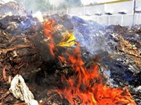 Burning of garbage by sanitation workers irks Panchkula residents