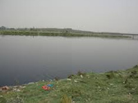 Action plan fails to clean Yamuna