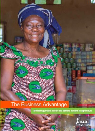 The business advantage: mobilizing private sector-led climate actions in agriculture