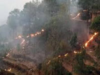 Mussoorie's Jabarkhet Reserve reports big loss in forest fires