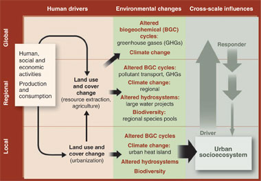 Much of today`s environmental impacts originate in cities