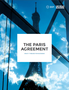 The Paris Agreement: what it means for business