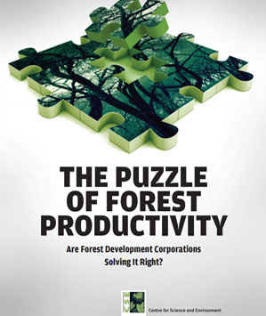The Puzzle of Forest Productivity: Are Forest Development Corporations Solving It Right?
