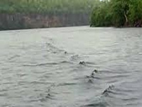 Centre forms task force on interlinking of rivers