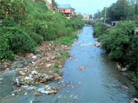 Monitoring committee constituted to check river pollution