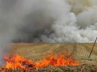No study that stubble burning impacts air'