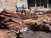 2 out of 91 closed tanneries get permission to operate